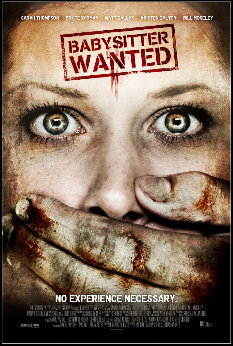 Babysitter Wanted (2008)