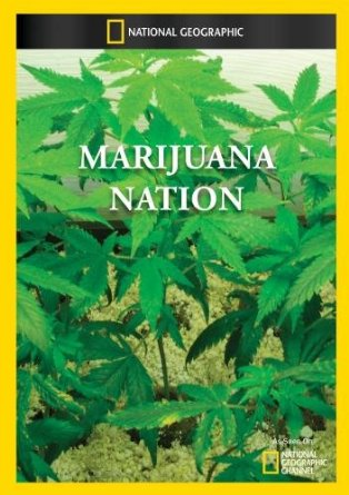 Marijuana Nation 2008