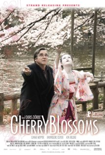 Cherry Blossoms 2008