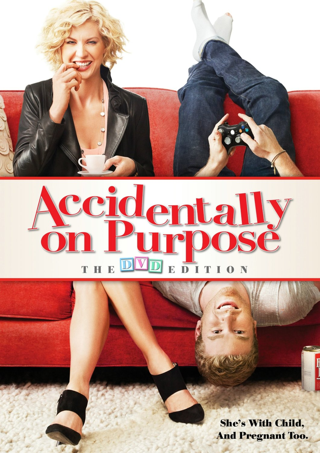 Accidentally on Purpose  (TV Series 2009-2010)